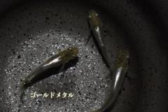 05goldmetal