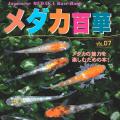 メダカ百華VOL.07